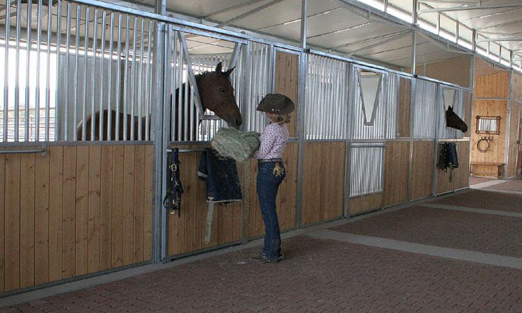 Coffman Barns Estate Series Horse Stalls