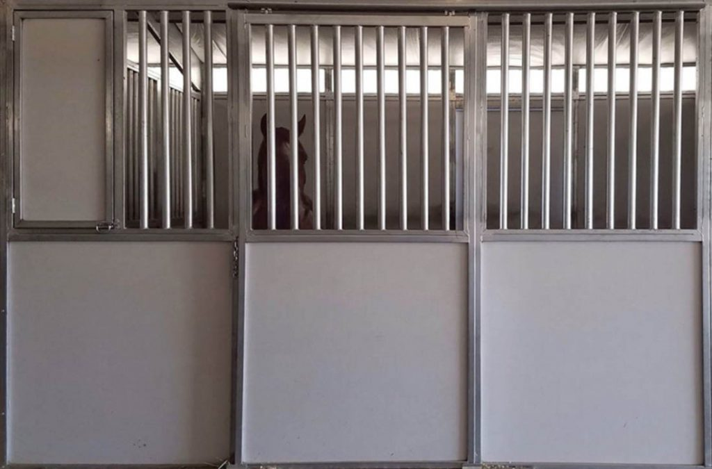 FCP Titan horse stall front